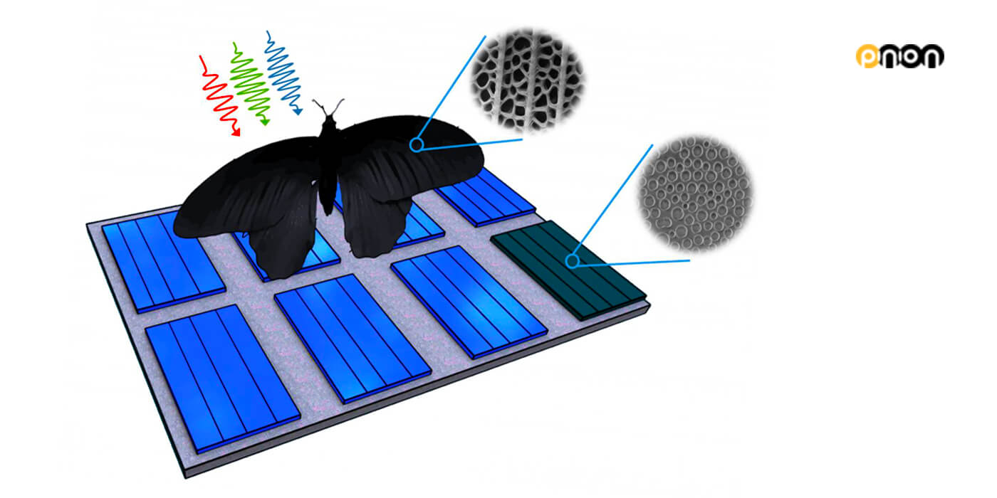 thin-film-solar-cells-nanoholes-butterfly-wings