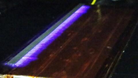 plasma-wings