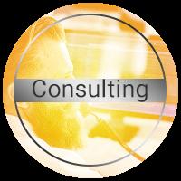 کارشناسان پینیون آماده برای هرگونه مشاوره به مشتریان خود